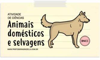 CIENCIAS - animais domesticos e selvagens
