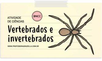 CIENCIAS - vertebrados e invertebrados