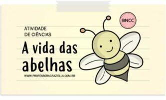 CIENCIAS - vida das abelhas